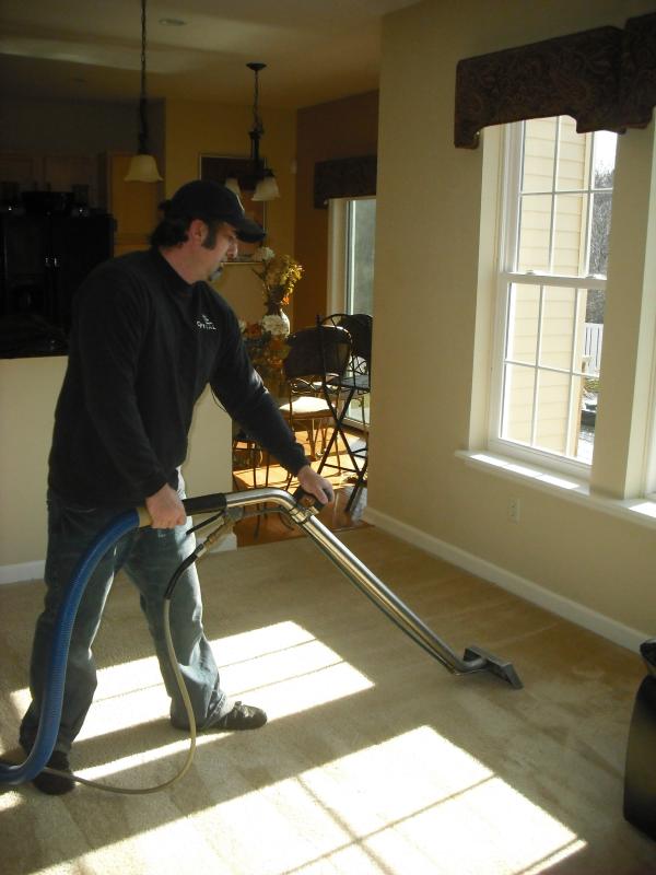 carpet cleaning albany clifton park saratoga springs glens falls ny