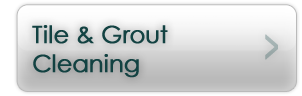 tilegroutcleaning button