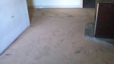 capital vacuums carpet Cleaning Before Picture